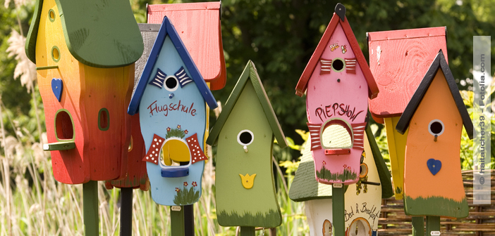 vogelhaus selber machen. Black Bedroom Furniture Sets. Home Design Ideas