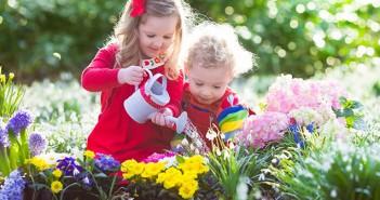 Header ein Frühlingsgruß