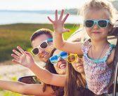 Sonnenbrillen: Stubenfliegen und Katzenaugen