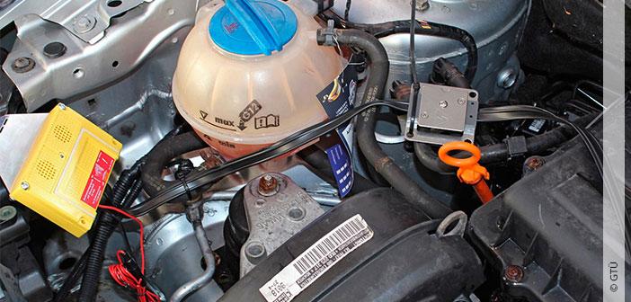 GTÜ: Kampf dem Marderbiss – Vorbeugen hilft, hohe Reparaturkosten zu vermeiden