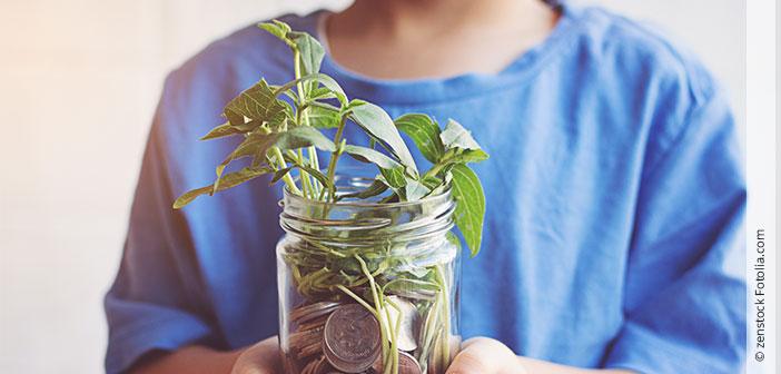 Mit gutem Gewissen Geld sparen
