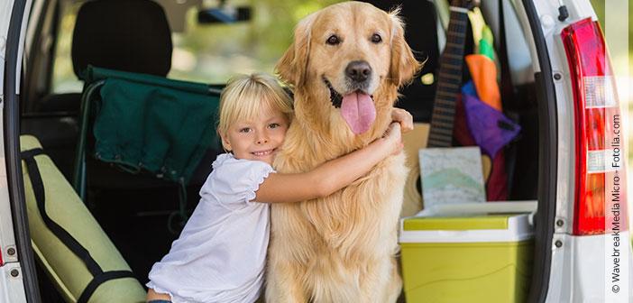 Mit dem Hund in den Urlaub - Tipps und Tricks