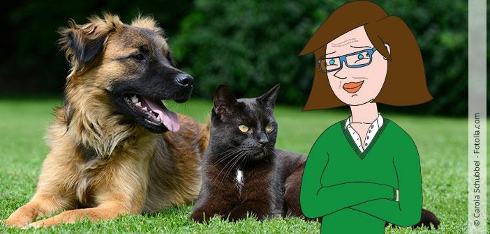 Mütter und Haustiere