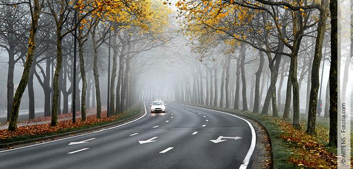 Header Sicheres Autofahren im Herbst