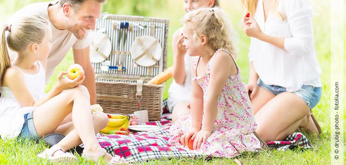 Das perfekte Picknick - Hallo Frau