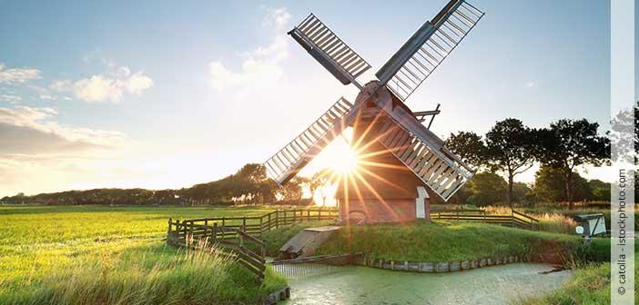 Header Kurzurlaub Niederlande mit Kindern