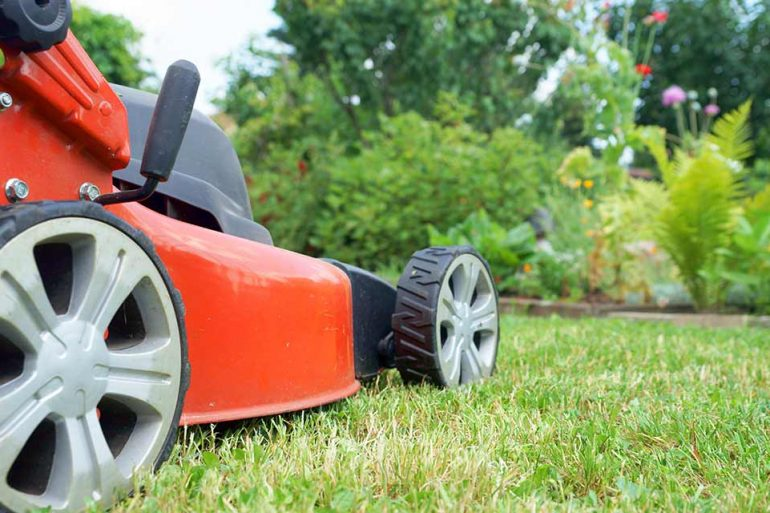 Rasenmäher-Check im Frühjahr